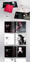 Apeiro Catalogue Full