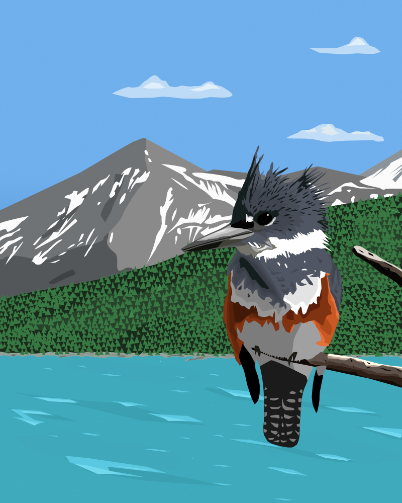Kingfisher by glassbitch