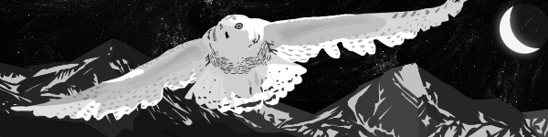 Snowy Owl by glassbitch