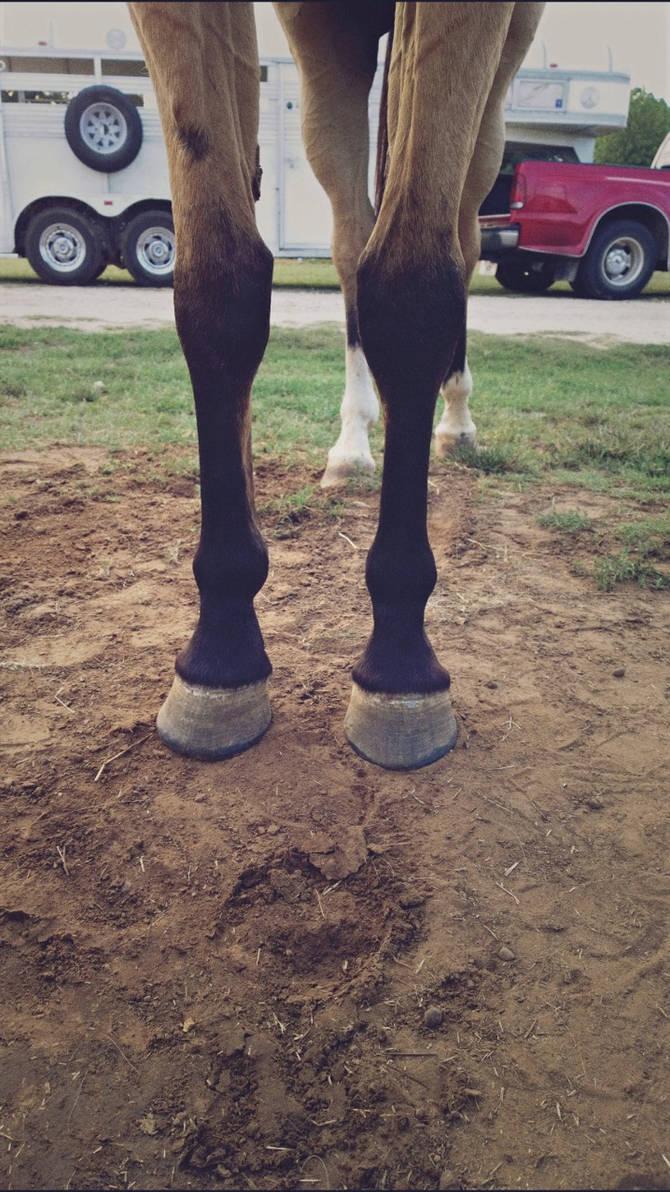 Glitter's feet
