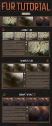 Fur tutorial (eng/rus) by hi-shiro