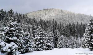 Snowy idyll