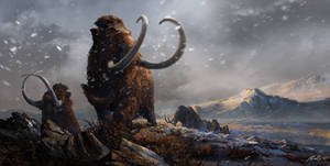 Prehistoric Mammals Woolly Mammoths by Balcsika