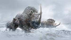 Woolly Rhinos by Balcsika