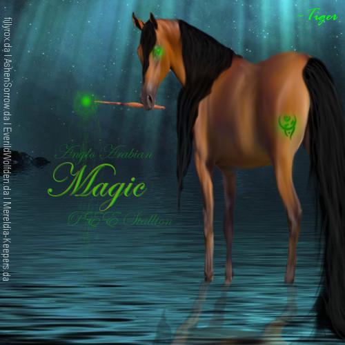 Magic AA by Galactic-Designs