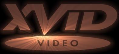 XviD Bronze Logo by charlyar