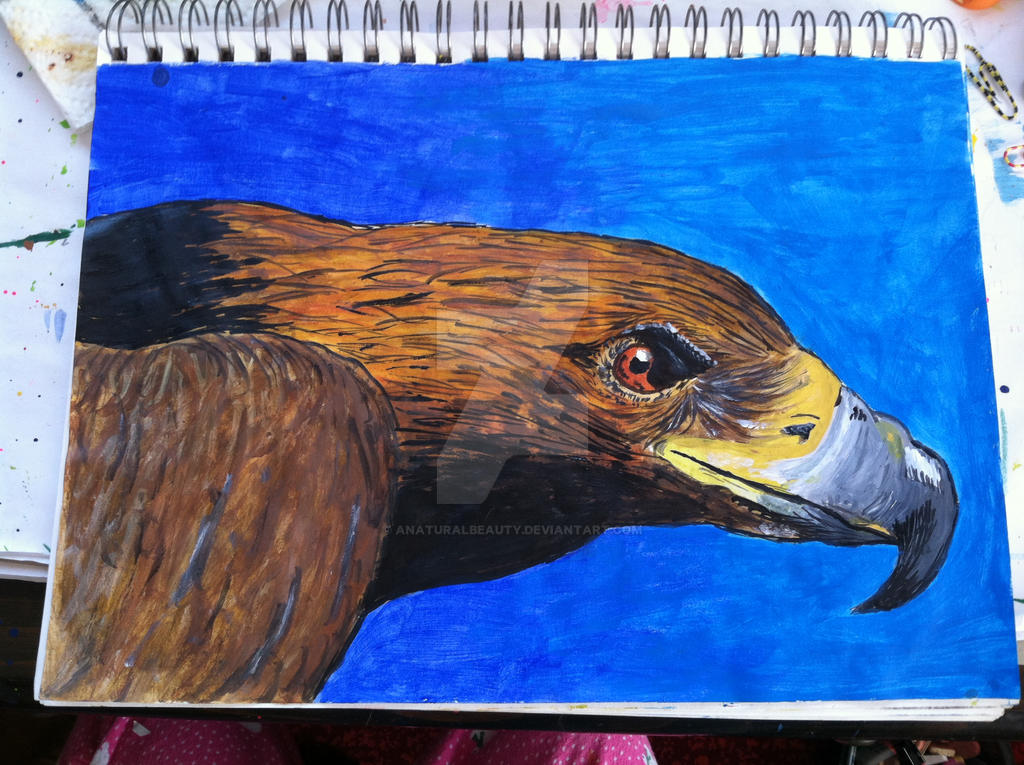 Golden Eagle painting by AnaturalBeauty