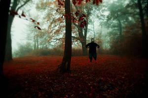 Come, play with me by artofinvi