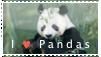 Panda-Stamp