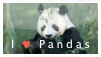 Panda-Stamp by Morrgrr