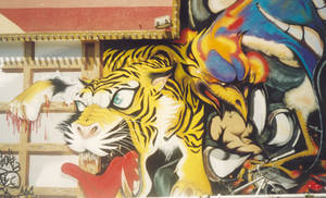 Tokyo Grafiti