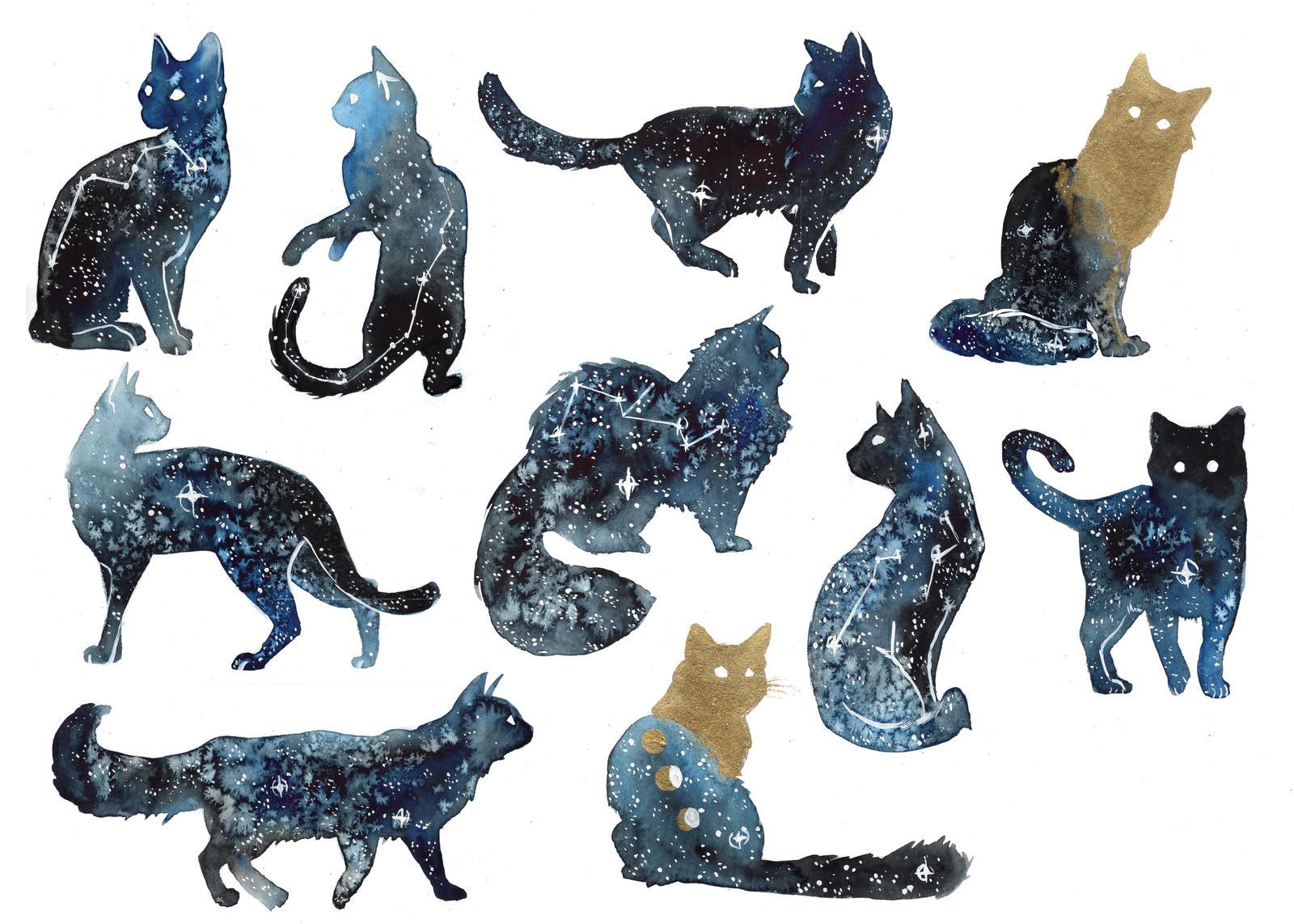Cat Puzza Galaxy Blue