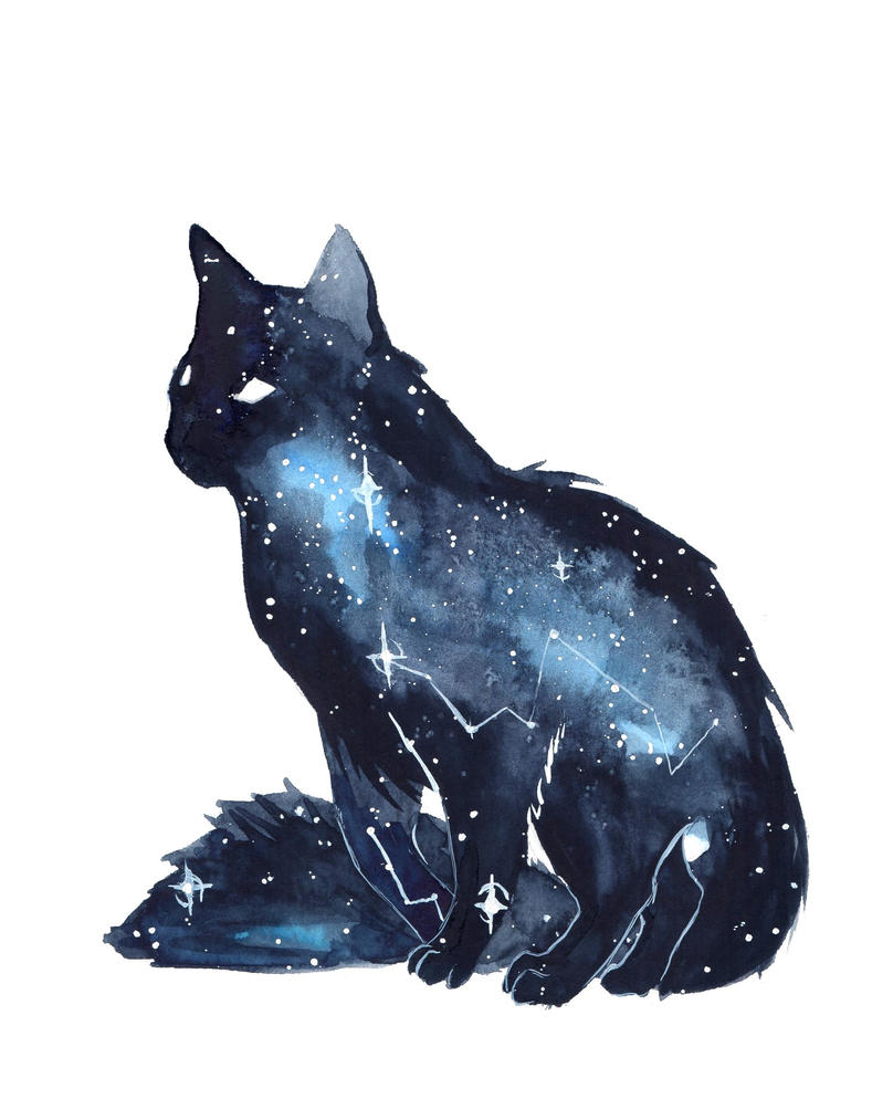 Cat With Galaxy Glasses
