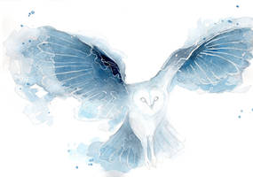 Watercolor Owl by ThreeLeaves