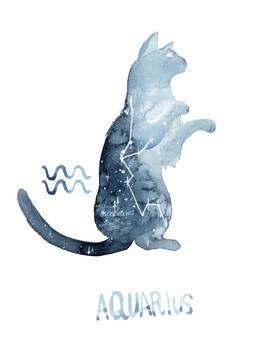 Zodiac Cat - Aquarius