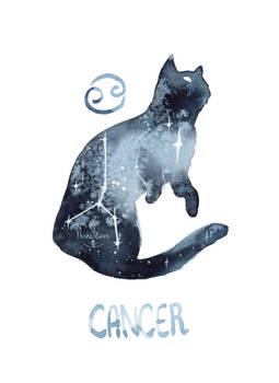 Zodiac Cat - Cancer