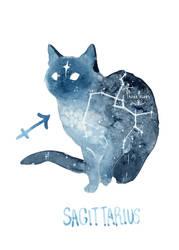 Zodiac Cat - Sagittarius