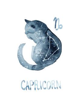 Zodiac Cat - Capricorn