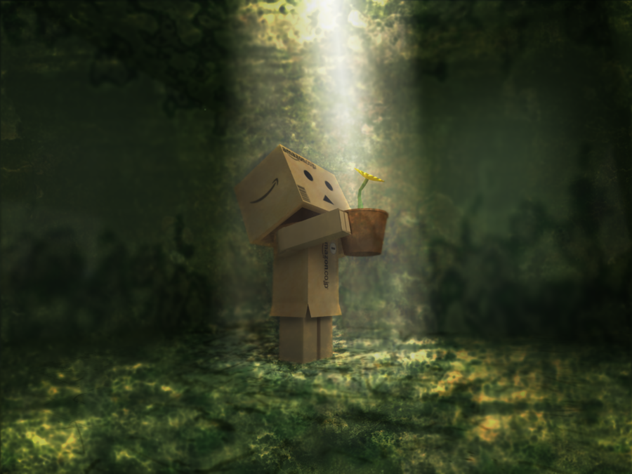 danbo toy by zetsin