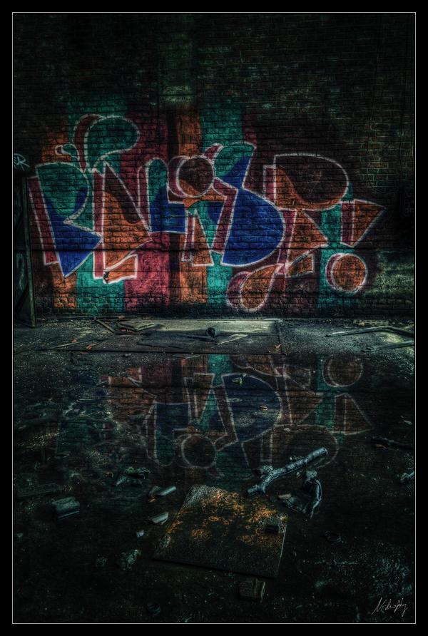 Puddle Reflection by Nichofsky