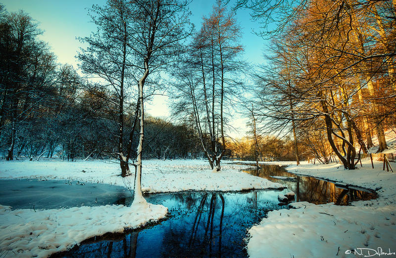 Winter Stream by Nichofsky