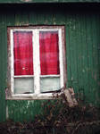 Red Green by cochaczion