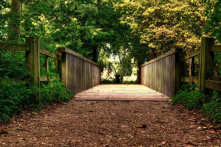 The Footbridge... by TheBaldingOne