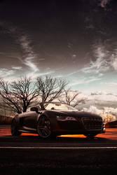 Audi Morning Glory