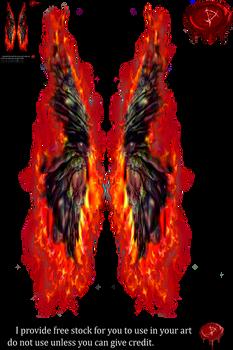 Fairy Wings w/fire 4