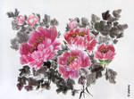 Peonies2 by zlatvic