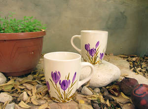 2 cups with crocuses