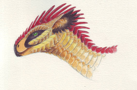Aidan Dragon in Watercolours