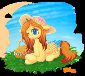 Sunny pony - Automne 2020