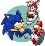 Sonic and Chip: Coconut Juice