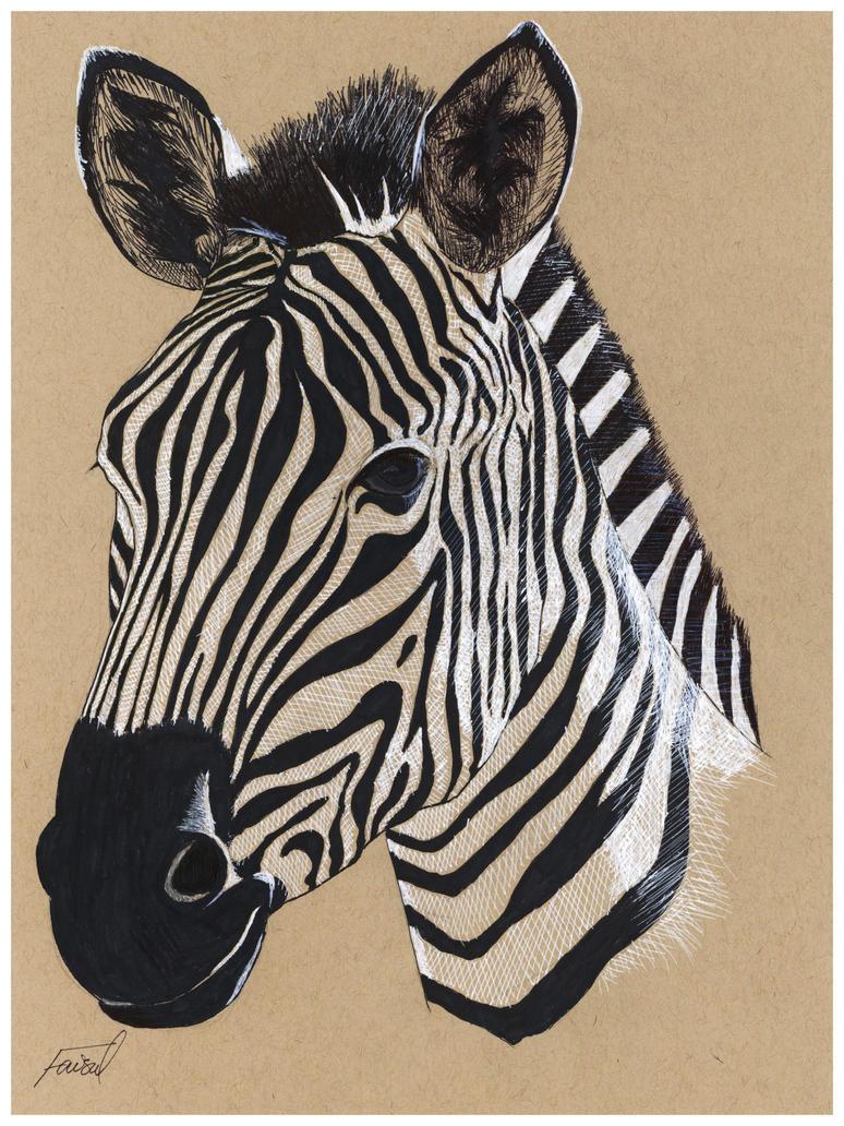 Zebra Portrait by fizz1173