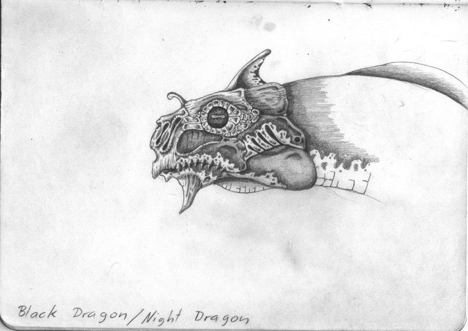 Night dragon by Reinhard-Gutzat