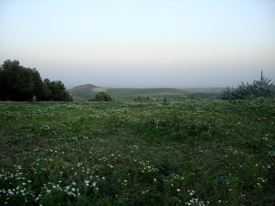 Landscape 4 by Visualjenna-Stock