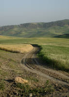Road 1 by Visualjenna-Stock