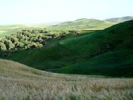 Landscape 5 by Visualjenna-Stock