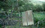 wood garden door 1