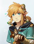 BOTW Link and other Links