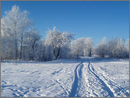 winter7 by kadavro
