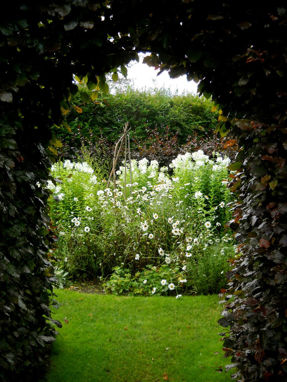 Pictures Of Garden Pathways And Walkways: Secret Garden By Mikomilktea On DeviantArt