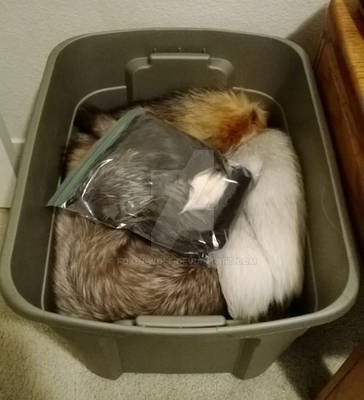 How I store my furs