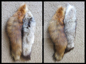 Tails FOR SALE