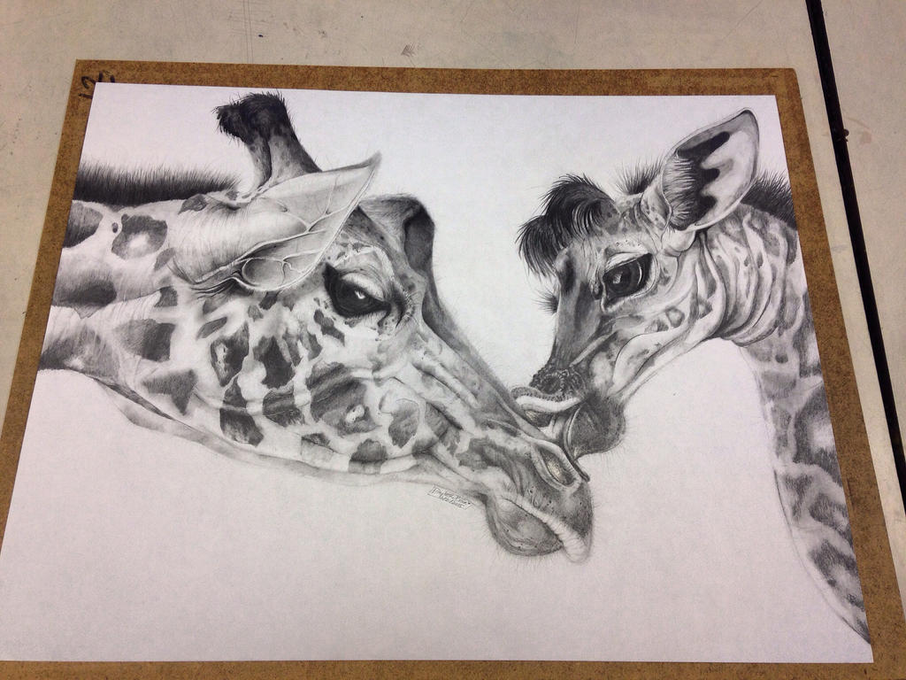 Mother and Baby Giraffes by artistdarleese