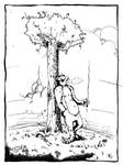 The Bear and the Tree and the day....
