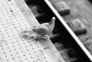 Wait for Train by FennecFoxen