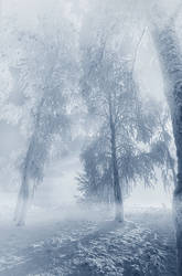 winter trees by ALiceFaux