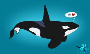 Birthday Orca by Sabre471